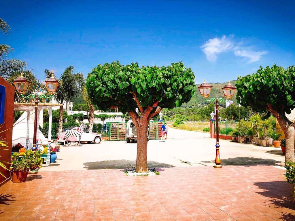 World Family Ibiza
