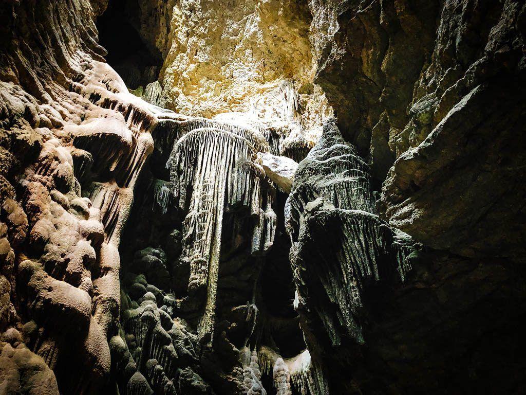 "Cova des Sants (""Cova de las medusas"")"